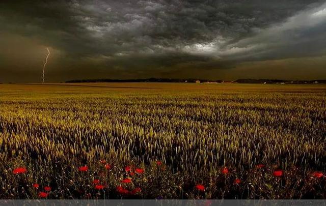 世界级绝色自然风光照片插图15
