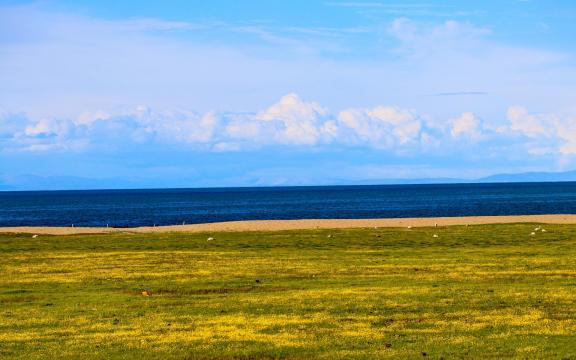 最美丽的青海湖风景插图