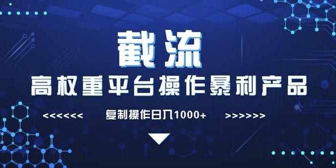 截流高权重平台:复制操作暴力产品日入1000+【视频课程】插图