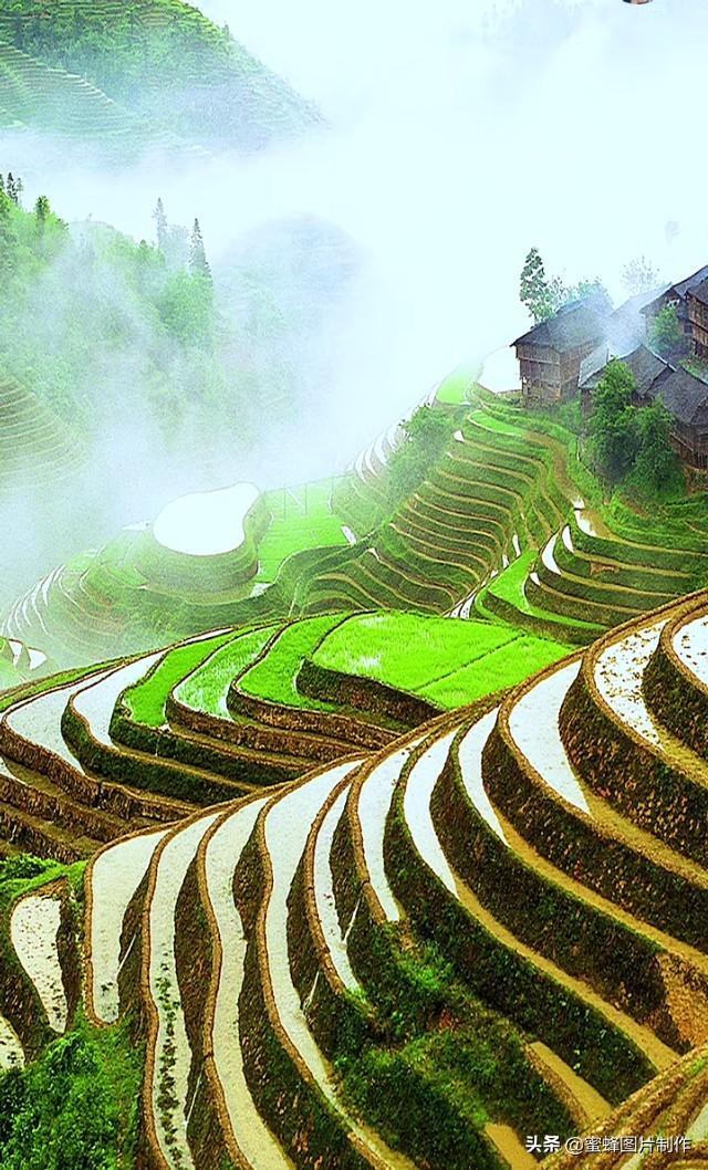 乡村生活真实风景头像壁纸插图1