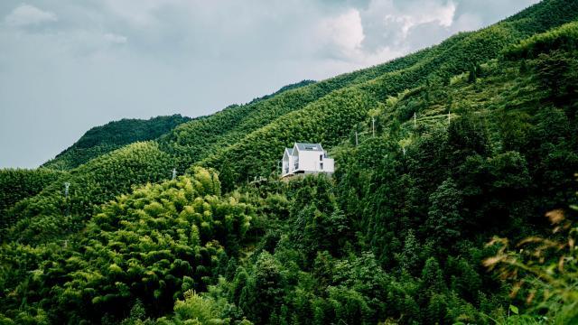 云和梯田绿色护眼风景写真插图3