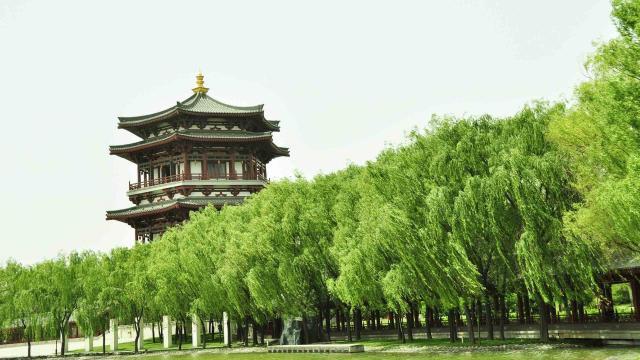 2020十一国内旅游景点大唐芙蓉园插图4