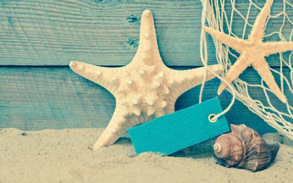 大自然的海星优美摄影图片插图2