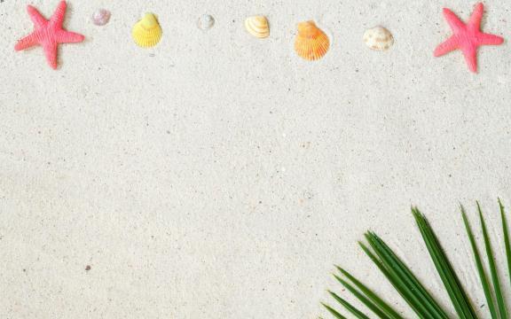 大自然的海星优美摄影图片插图8