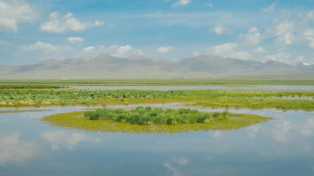 四川若尔盖草原绿色迷人风光插图3