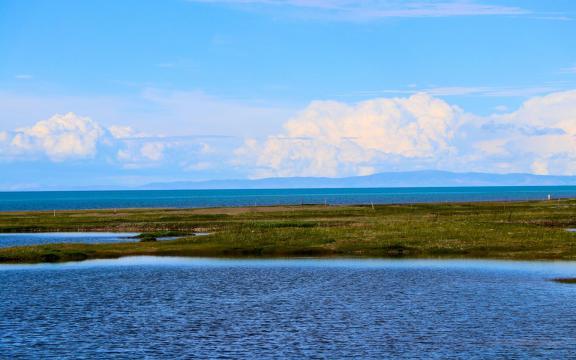 最美丽的青海湖风景插图5
