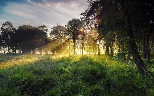 震撼!70张世界级绝色自然风光照片传来插图25