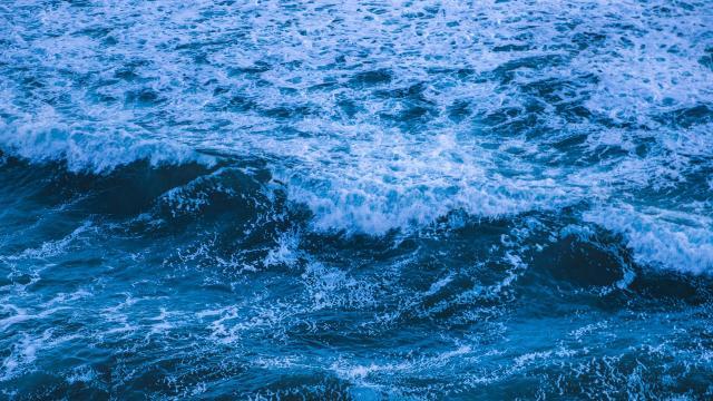 悉尼蔚蓝海景迷人写真插图1