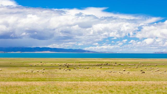 国庆旅游西藏色林措清新自然风光插图2