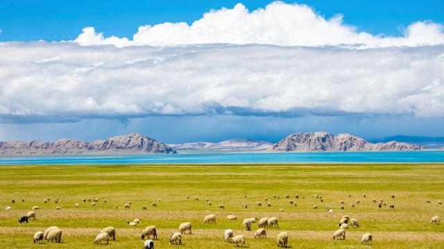 国庆旅游西藏色林措清新自然风光插图7