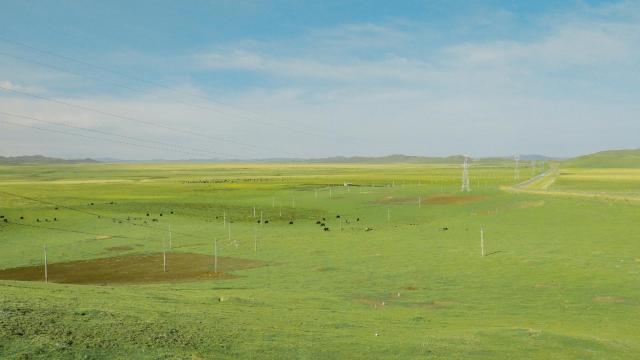四川若尔盖草原绿色迷人风光插图