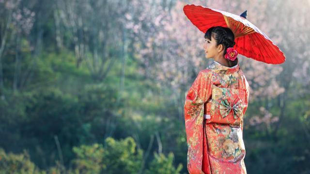 知性文雅的日本和服玉人插图