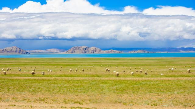 国庆旅游西藏色林措清新自然风光插图5