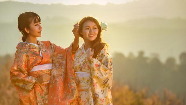 知性文雅的日本和服玉人插图1